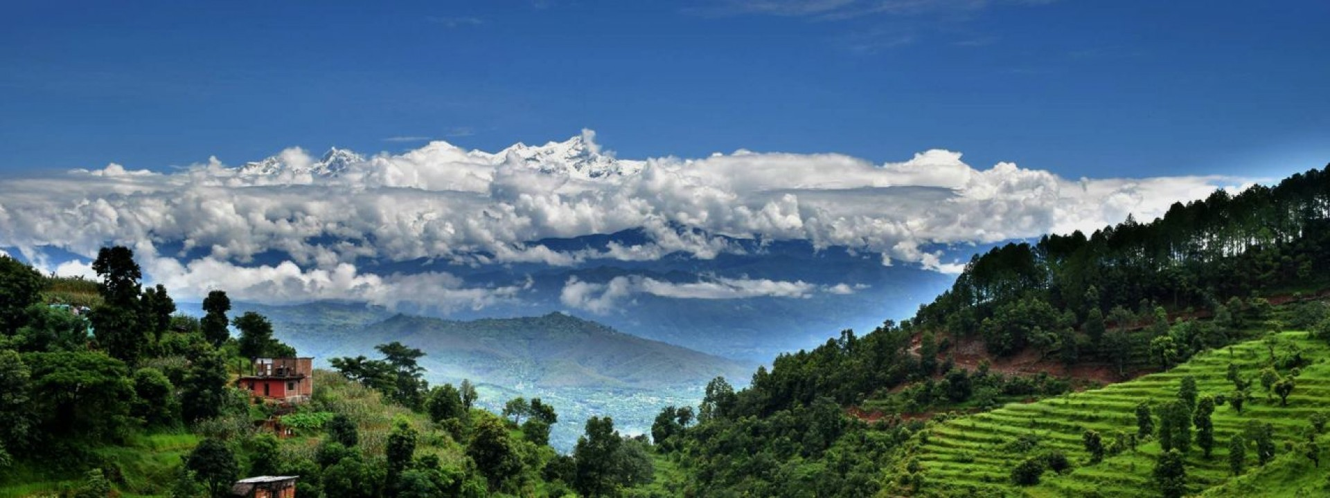 Bandipur- Riepe Homestay Tour